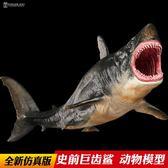 巨齒鯊 仿真動物模型玩具 海洋生物動物 史前鯊魚 兒童男孩玩具 MKS小宅女