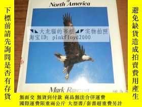 二手書博民逛書店Birds罕見of North America(北美洲鳥類)館藏