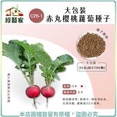 【綠藝家】大包裝C26-1.赤丸櫻桃蘿蔔種子35克(約3700顆)