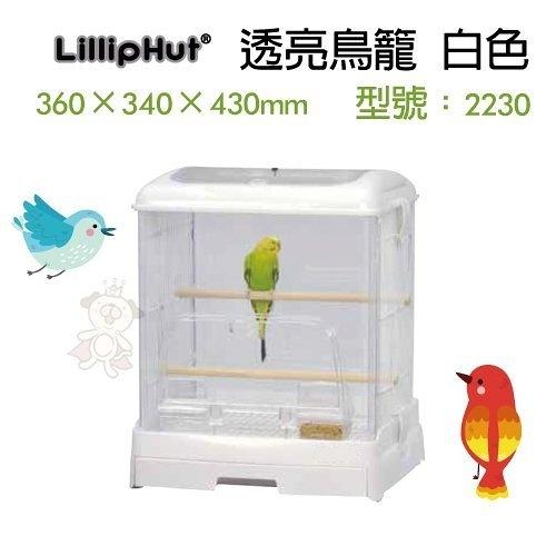 *WANG* LillipHut 麗莉寶 透亮鳥籠 白色 型號:2230 專利抽屜式鳥籠