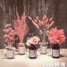 干花花束裝飾擺件滿天星永生花粉黛天然真花棉花網紅家居客廳擺設 自由角落
