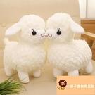 小寵物小綿羊可愛毛絨玩具公仔禮物羊駝玩偶【小獅子】