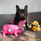 狗狗玩具豬豬耐咬磨牙幼犬法斗寵物發聲玩具社會豬【小獅子】