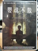 挖寶二手片-0B02-322-正版DVD-電影【嬰魂不散(2019)】-開春全新懸疑恐怖片(直購價)