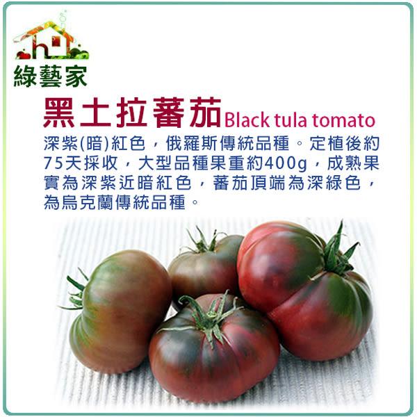【綠藝家】大包裝G66.黑土拉蕃茄種子0.3克(約100顆)