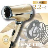 TESCOM TID2510TW超大風量負離子吹風機(香檳金)