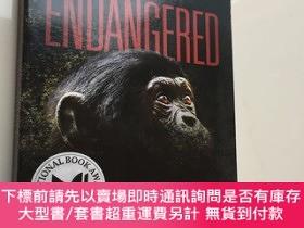 二手書博民逛書店Endangered罕見(Ape Quartet) 瀕危(猿四方)Y439265 ELIOT SCHREFER