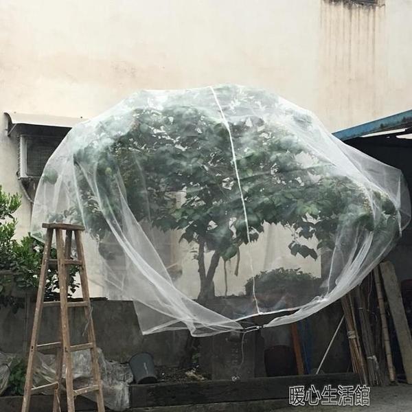 防風防鳥網楊梅網罩櫻桃防蟲水果樹罩多肉蓮霧桃樹羅幔大棚專用罩 快速出貨快速出貨