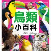 鳥類小百科(正方彩色精裝書144頁)