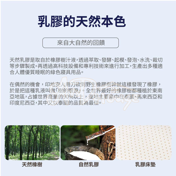 [AnD House]天然乳膠床墊【雙人5*6.2尺*5公分】