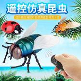 遙控蒼蠅昆蟲動物模型兒童男孩新奇玩具搞怪整蠱禮物仿真瓢蟲 居家物語