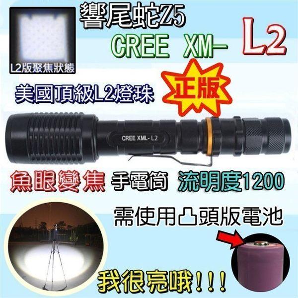 柚柚的店【27039】響尾蛇z5美國CREE XM-L2強光魚眼變焦手電筒