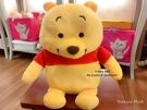 *Yvonne MJA*日本迪士尼預購區限定正品 小熊維尼 加水式 蓄水式 保暖娃娃