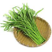 空心菜/約250g★安全蔬菜