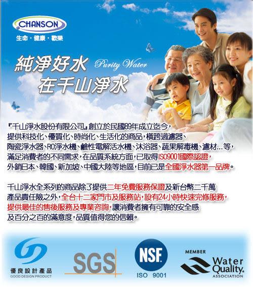 千山淨水Chanson原廠公司貨精密進口顆粒活性碳濾心CT-J20/CTJ20/CTJ2/CT-J2