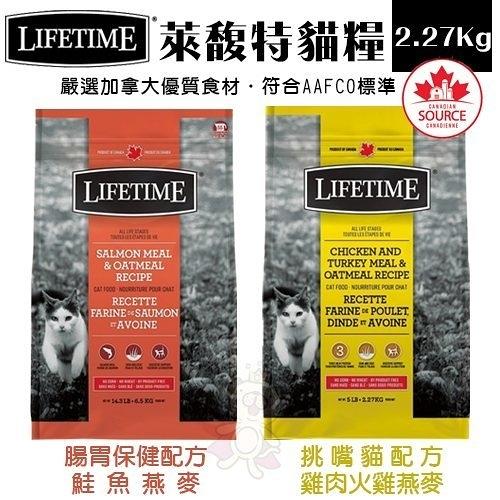*KING*LIFETIME萊馥特 全齡貓糧-腸胃保健|挑嘴貓配方2.27Kg.複方蛋白質易消化好吸收.貓糧