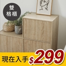 木質 書櫃 雙格櫃 置物櫃 收納櫃 二格櫃【N0002】Alma日式木紋雙格櫃(兩色) 完美主義
