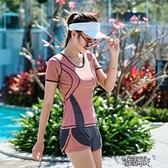 泳衣女新款遮肚顯瘦分體式游泳衣女平角泳褲【全館免運】