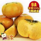 果之家產地特選高山摩天嶺甜柿禮盒6顆禮盒(9A,單顆8-9兩)