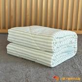 冬被水洗棉被天竺棉棉被單人雙人床【小獅子】