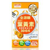 日本味王金盞花葉黃素晶亮膠囊30粒/盒【康是美】