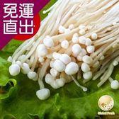 Global Fresh 日本長野金針菇15入200g/包【免運直出】