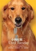 (二手書)小狗星期二