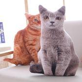 創意仿真貓咪抱枕大臉貓3d毛絨玩具女生圣誕節玩偶娃娃可愛禮物【美物居家館】