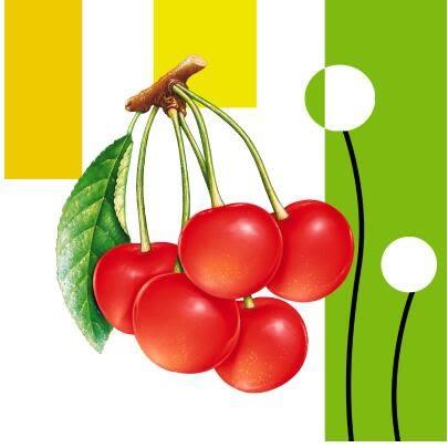 水果餐廳裝飾畫客廳沙發背景牆畫無框畫廚房玄關水果掛畫單幅