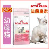 *WANG*法國皇家K36 幼母貓貓飼料-2kg