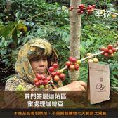 【咖啡綠商號】蘇門答臘迦佑區蜜處理咖啡豆(半磅)