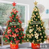 加密全松針1.2米聖誕樹豪華套餐圣誕節裝飾品 DJ1183『毛菇小象』