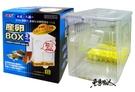 GEX 日本五味【孔雀魚產卵盒 (S)】內置式隔離盒、繁殖盒、飼育盒 魚事職人