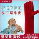 寵物手套 寵物店防貓抓防狗咬手套加長加厚耐撕扯訓狗防咬寵物洗澡手套家用 阿薩布魯
