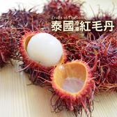 【大口市集】泰國進口鮮凍紅毛丹4包(300g/包)+贈山竹1包