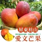 屏東爆甜枋山愛文芒果(10台斤/12~24顆)
