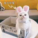 無D貓 寵物兔子貓咪頭套可愛帽子成人兔耳朵兔造型英短『洛小仙女鞋』