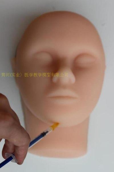 微雕時代 微整形容外科訓練模型 美容 整形微整形模型形注射模型