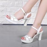 高跟鞋女粗跟2019新款韓版百搭一字帶夏季女鞋魚嘴羅馬中跟涼鞋女
