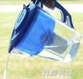 凈水器凈水壺家用直飲濾芯wp3903適用於凈水壺凈水杯wp2801