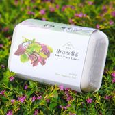 【青菜笠】雞蛋環保植栽盒-嫩沙拉萵苣