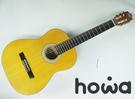 howa 豪華樂器 GL-01 39吋普...
