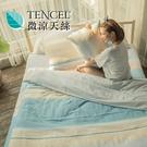 #HT005#絲柔親膚奧地利TENCEL天絲3.5尺單人床包+枕套二件組(不含被套)台灣製/萊賽爾Lyocell
