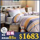 天絲床包 台灣製300織 雙人床包組、薄...