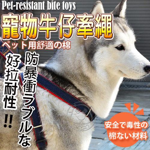 【培菓幸福寵物專營店】DYY》100%手工中小型犬走防暴衝牛仔布寵加厚物胸背帶組S號