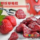 鮮採草莓乾500G大包裝 每日優果...