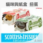 ~東京 ~ KITAN 蘇格蘭摺耳貓衛生紙盒吊飾扭蛋轉蛋公仔全5 種 出貨不挑款