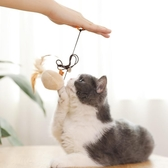 貓玩具逗貓棒羽毛小貓逗貓玩具貓貓磨牙套裝幼貓用品貓咪玩具自嗨 創時代3c館