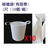 移植袋.美植袋1尺(有耳帶)//型號PB10(10個/組)