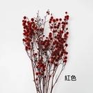 日本進口永生花花材,大地農園花材 ,永生蠟梅,一份 (長約10公分,5-7個花頭)